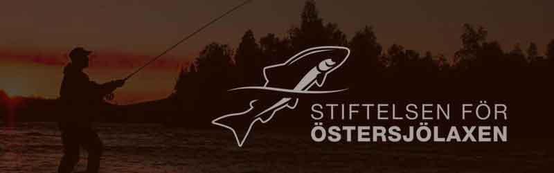 Fler sportfiskare hittar till Vindelälven