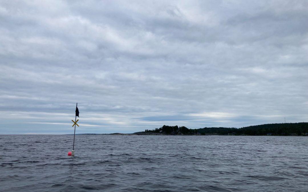 Kryphål i regelverket utnyttjas för fiske med fasta redskap vid Ljungan